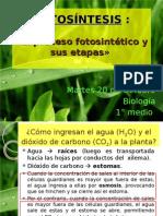 Fotosíntesis 2 (Parte 1)