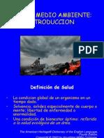 SALUD Y M.A. INTRO.pdf