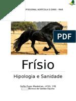 Frísio