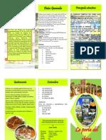 Triptico Sullana.pdf