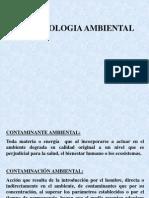 02SESIÓN 1b Terminología Ambiental