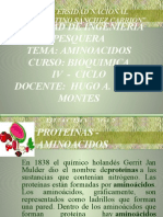 C-AMINOACIDOS..pptx