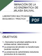 DETERMINACIÓN DE LA ACTIVIDAD ENZIMATICA DE LA AMILASA SALIVAL