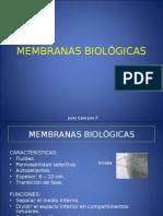 MEMBRANAS BIOLOGICAS (TEORIA)