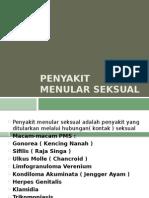 Penyakit menular seksual (kulit kelamin)