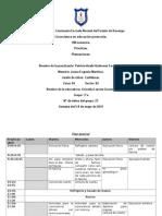 Planeaciones 5-8 Mayo 2015