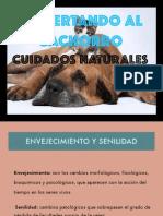 Charla Abuelos PDF (1)