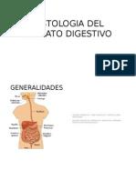 Histologia Del Aparato Digestivo (Conty)