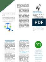 alternative measures pamphlet  1