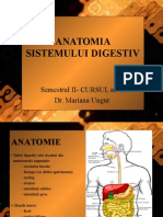 Anatomia Sistemului Digestiv Cursul 1