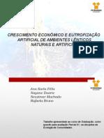 Trabalho Ecologia Eutrofização (2)