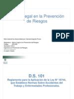 Presentación 4. D.S. 101