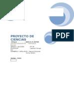 Proyecto de Ciencias Barco a Vapor