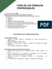 Estructura de Los Trabajos Profesionales