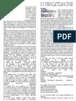 PRACTICA.COMPRENSION DE TEXTOS.docx