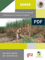 Biocombustibles en Mexico Estudio Completo