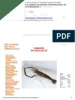 CRIANZA DE CAMARONES.pdf