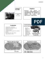 Uva.pdf