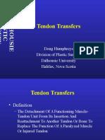 Transferencias Paralisis Radial