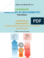2015 Biokimia Biosynthesis Carbohydrate 7