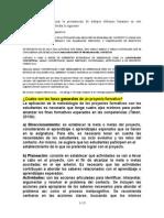 FORMATO_PROYECTO