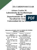 Cardiovascular  (Curso Normal)