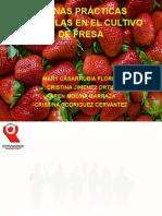 Exposicion Agroindustrial
