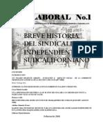 BREVE HISTORIA DEL SINDICALISMO SUDCALIFORNIANO _LIBRO ELECTRÓNICO_