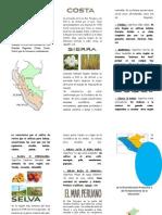 Triptico de Las Regiones Naturales_diana