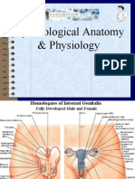 NurseReview.Org Gynecological Anatomy & Physiology