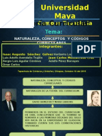 Proceso de Diseño Curricular.pptx