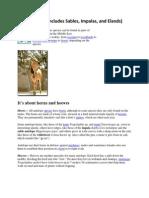 3c - DRC - Antelope (Sable, Impala, Elands)
