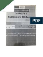 Actividad 4 expresiones algebraicas