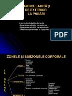 LP4-5-Particularitati de Exterior La Pasari Dom