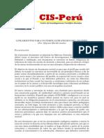 Lineamientos para un perfil estratégico de trabajo del CIS-Perú