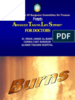 burns.ppt