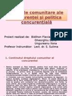 Regulile Comunitare Ale Concurenței Şi Politica Concurenţială