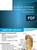 anatomi fisiologi hidung