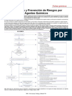 Evaluación y prevención de riesgos por agentes químicos.pdf