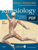 Kinesiology Skeletal System and Muscle Function