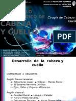 Desarrollo Embriológico de Cabeza