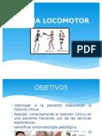 Semiología del Sistema Locomotor - Heinter