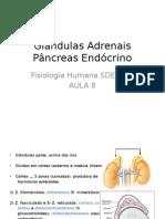Aula 8 Fisiologia - Adrenais e Pâncreas Endócrino