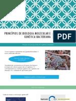 Aula 6 - Princípios de biologia molecular e genética bacteriana.pdf