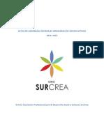 Actas de Asambleas Generales Ordinarias O.N.G. SurCrea