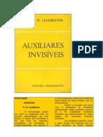 Auxiliares Invisíveis (Rev)