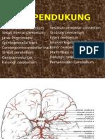 Data Pendukung Cerebellum