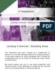 Supplement Annex VI