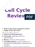 cell cycle review