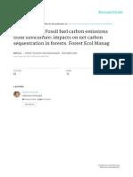Markewitz 2006 FEM Carbon Costs